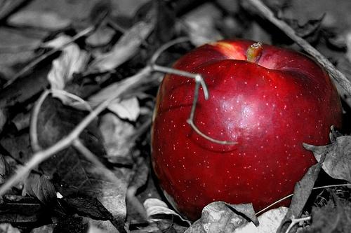 La mela rossa simbolo del peccato